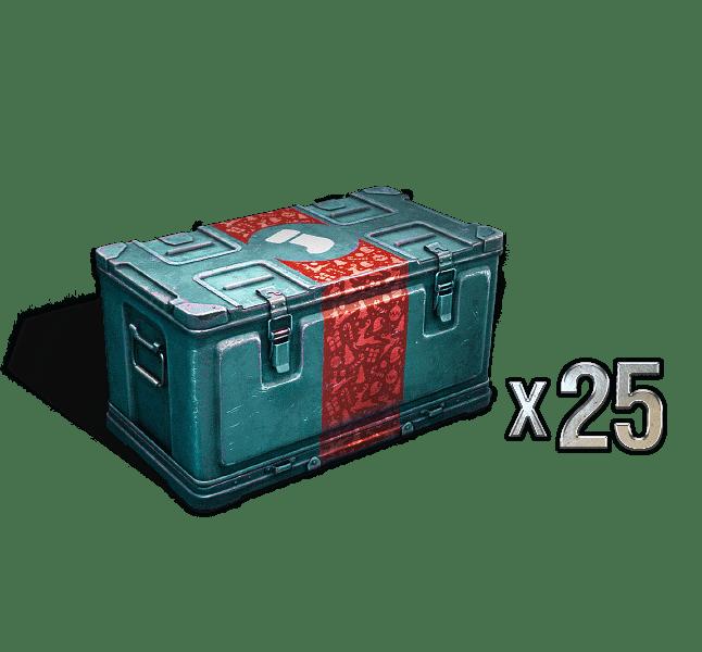 CHRISTMAS BOX X25